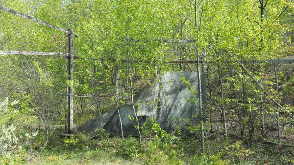 Centralia, PA - Abandoned park - Baseball diamond backstop