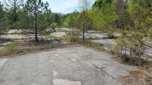 Centralia basketball courts