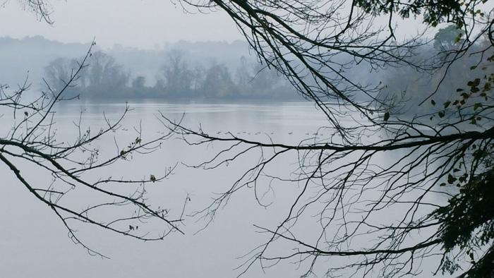 Lake in the rain